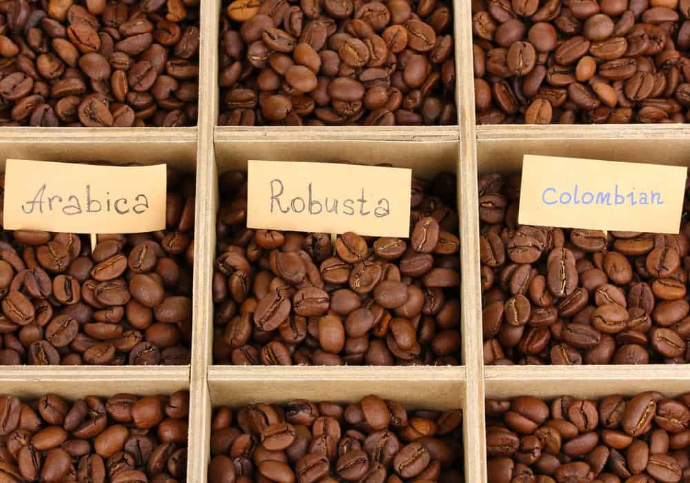 Arabica Vs. Colombian Vs. Robusta Coffee Beans What's the Difference