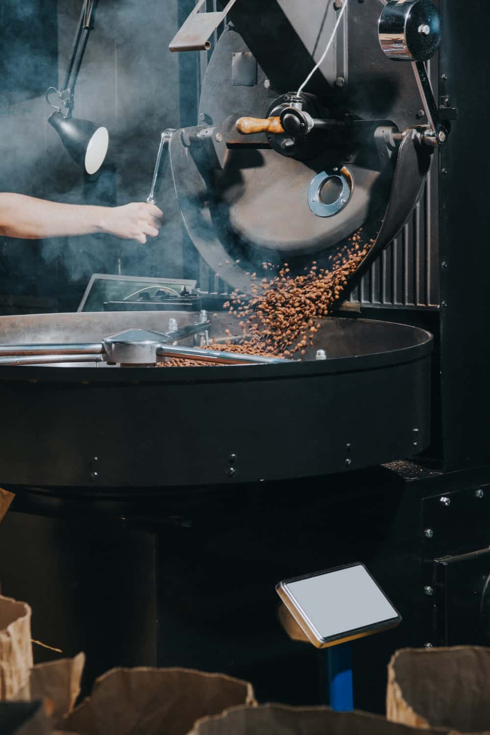 Roasting brings out the flavor of the coffee bean – but also kills it