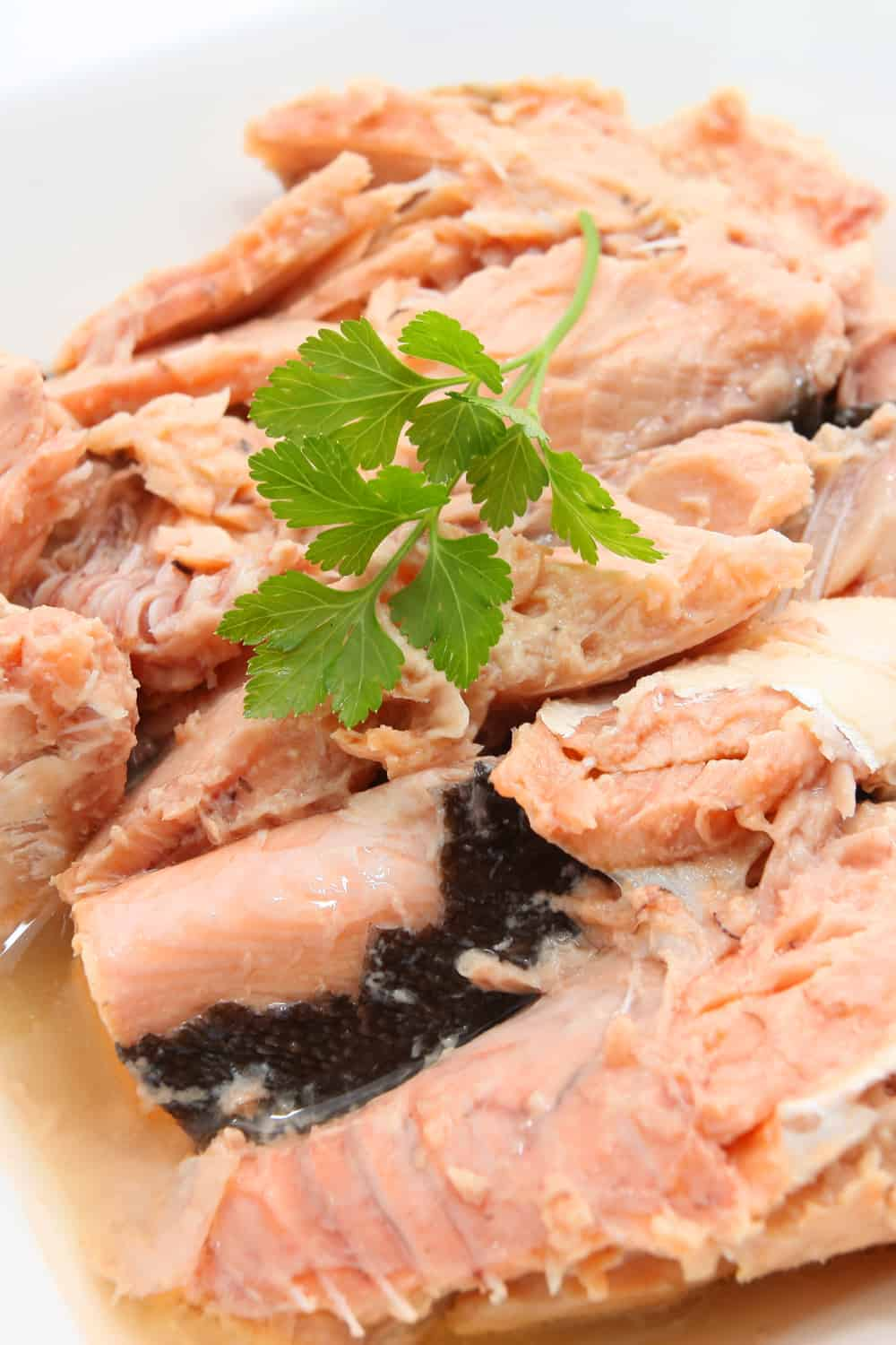 Best Canned Salmon 1