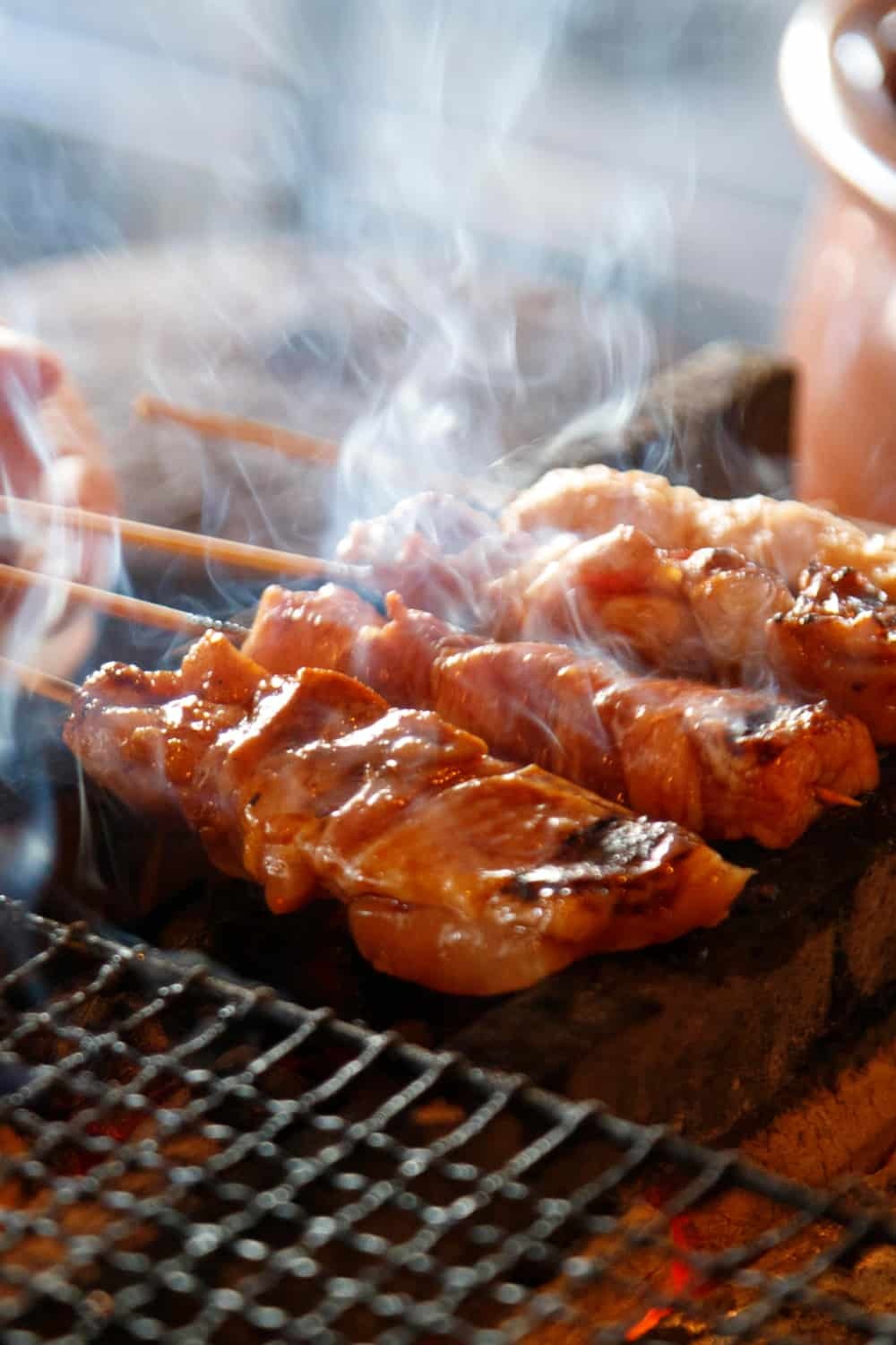Japanese Street Food Yakitori
