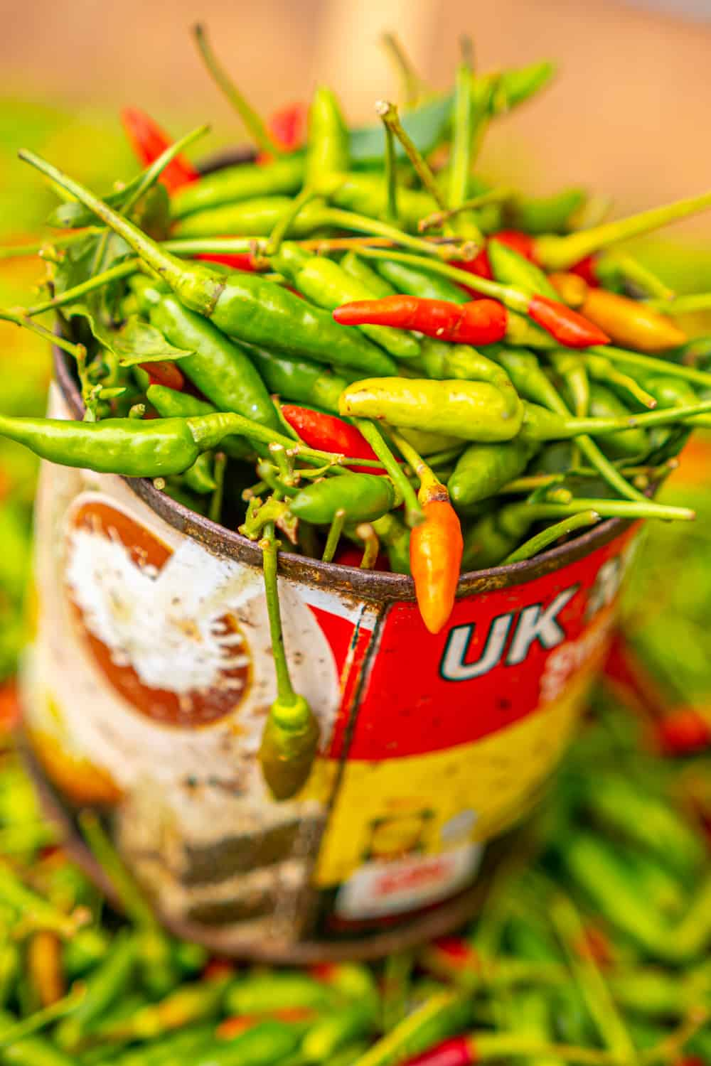chilli in a can