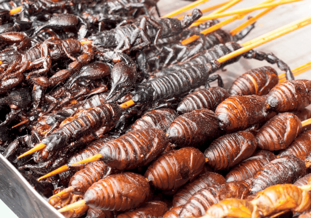 Chinese Street Food Fried bugs and assorted creepy-crawlies