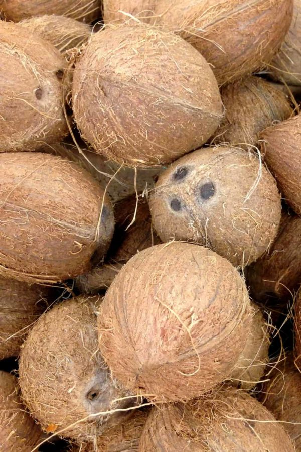 Does Coconut Go Bad? How Long Does Coconut Last? (Tips to Tell)