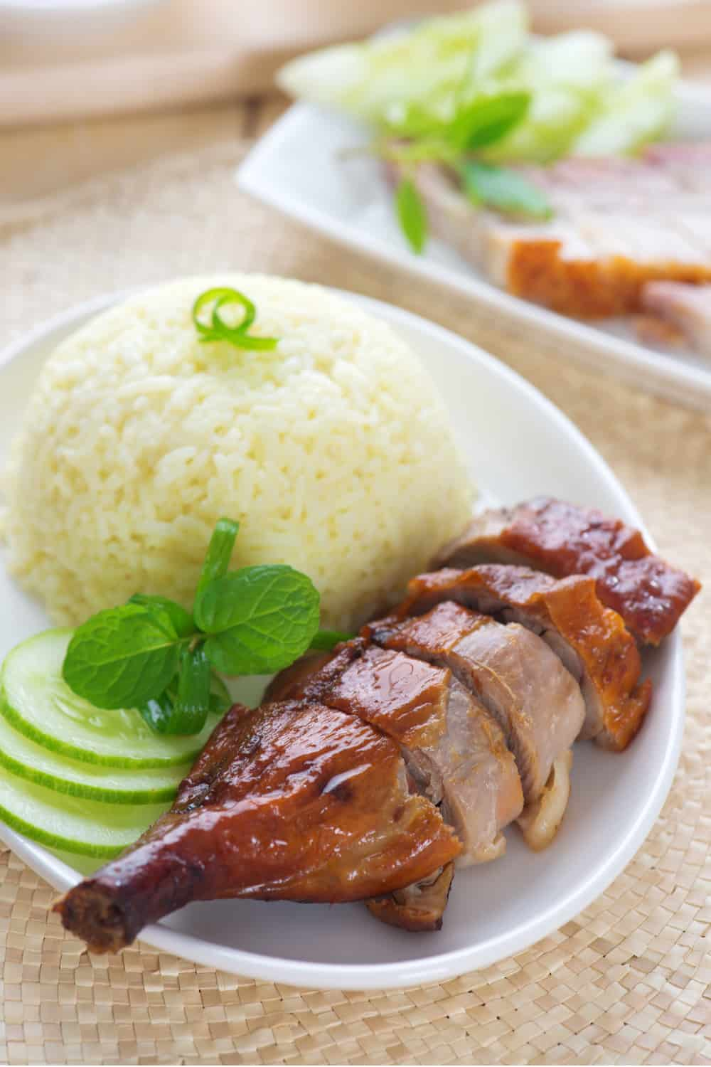 Hong Kong Street Food Roast Duck or Goose on Rice