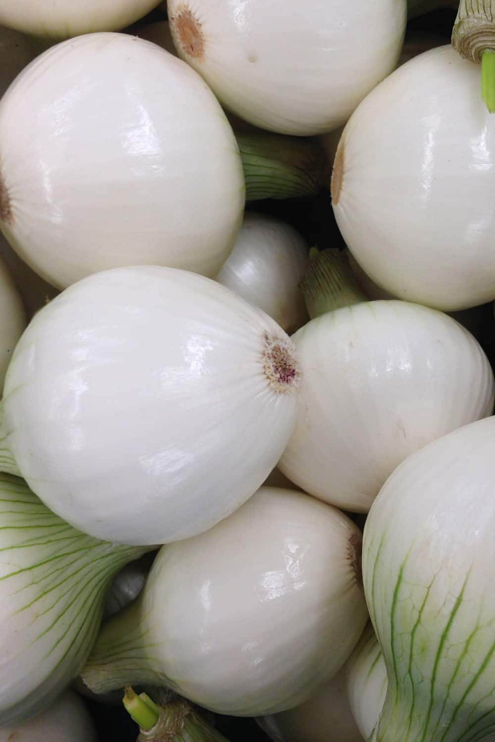 4 Tips To Tell If Onion Has Gone Bad