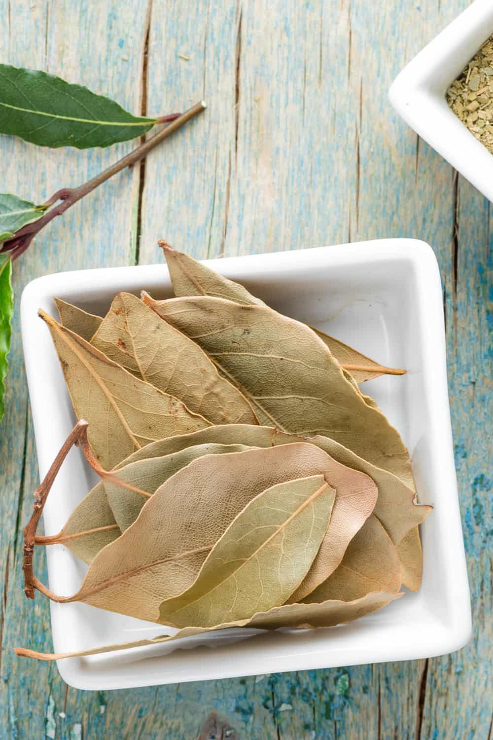 Do Bay Leaves Go Bad How Long Does It Last