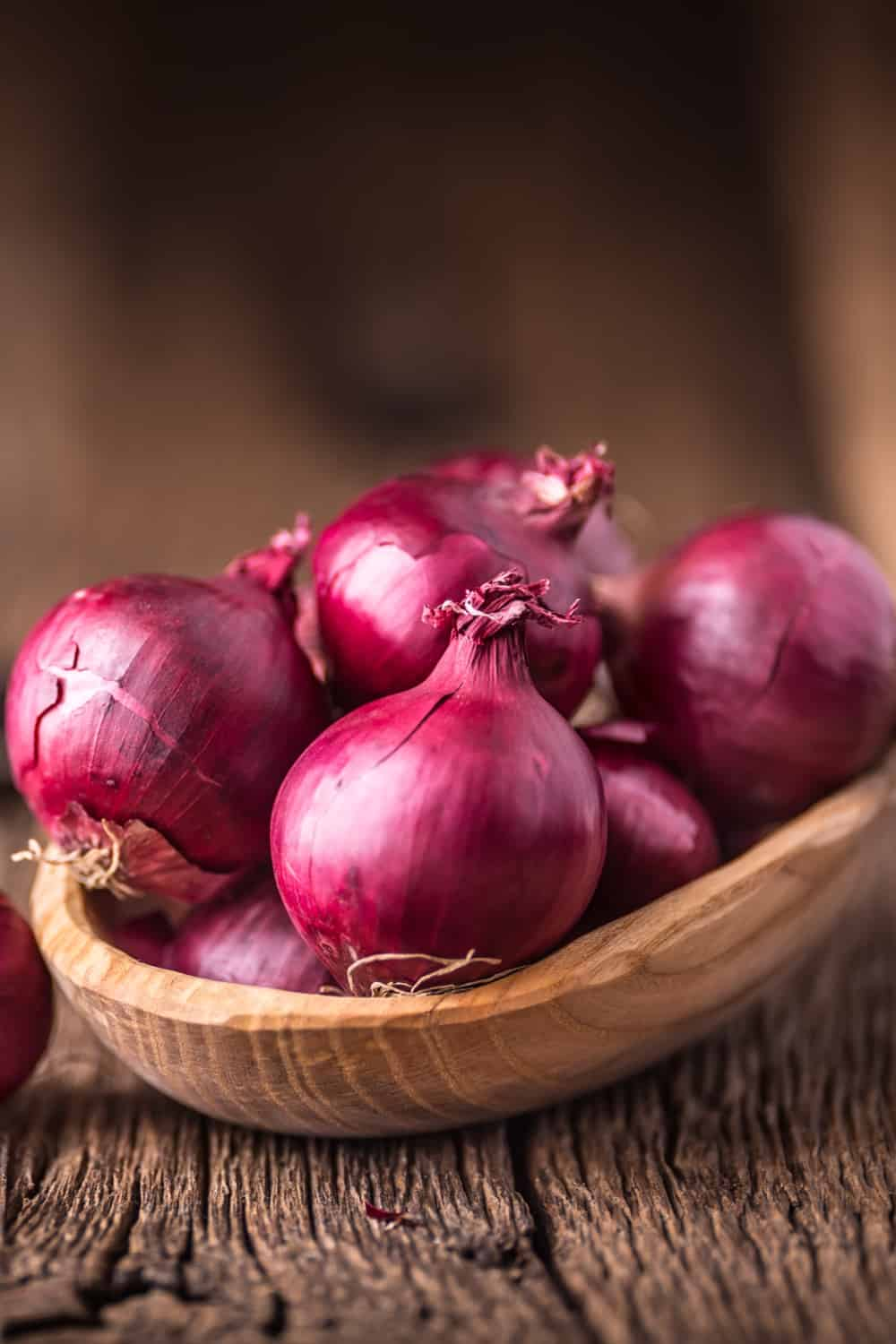 Does Onion Go Bad How Long Does It Last