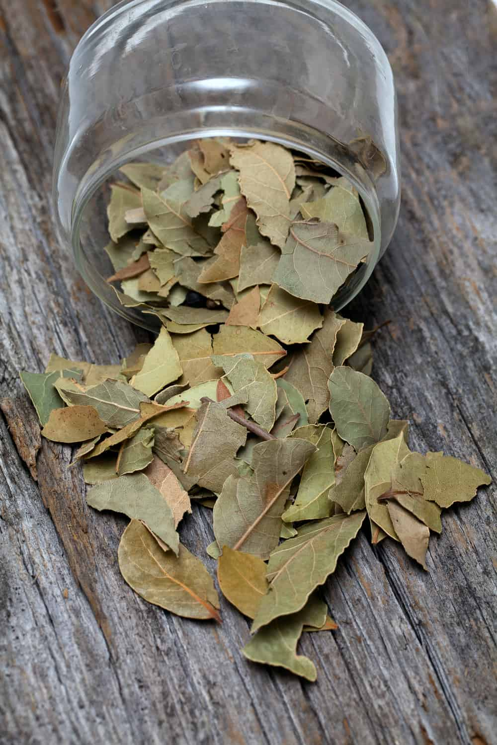 How long Do Bay Leaves Last