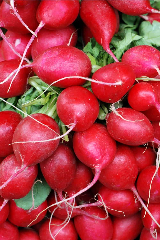 How long do radishes last
