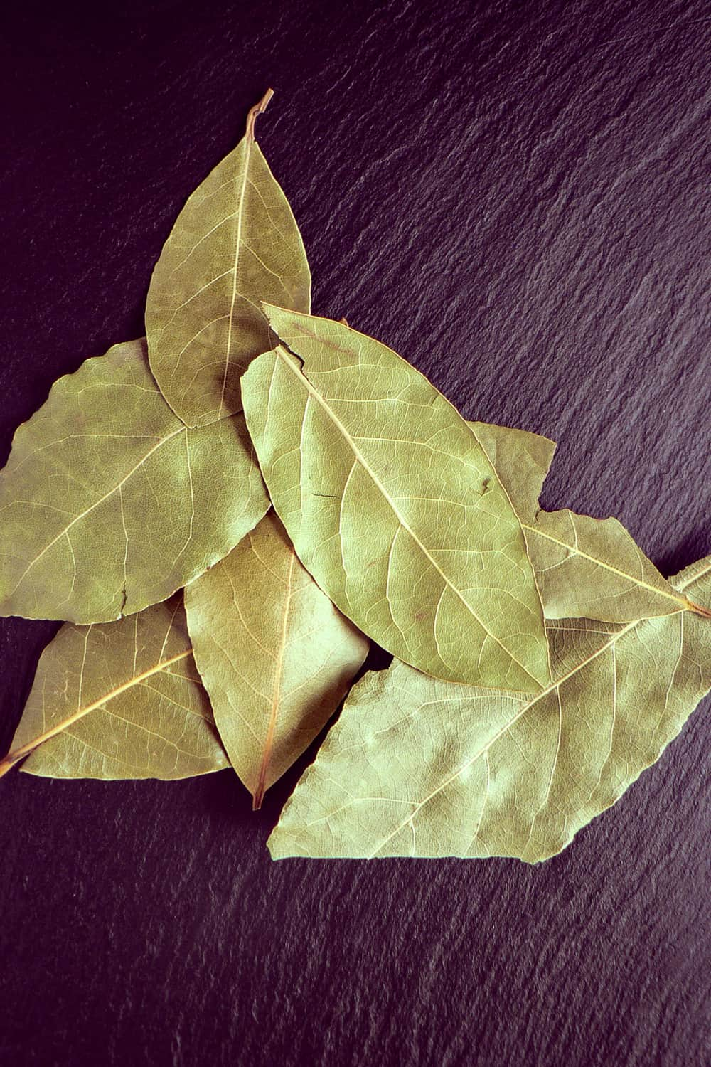 How to Tell If Bay Leaves Have Gone Bad