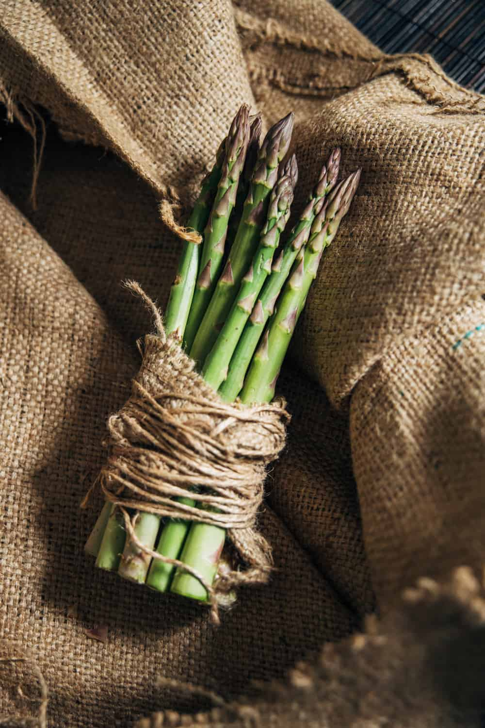 How to Tell if Asparagus has Gone Bad