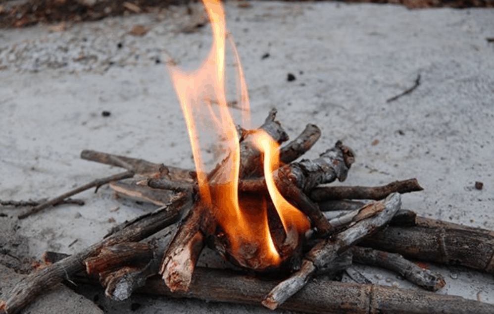 Learn How to Make Fire Starters Out of Egg Cartons