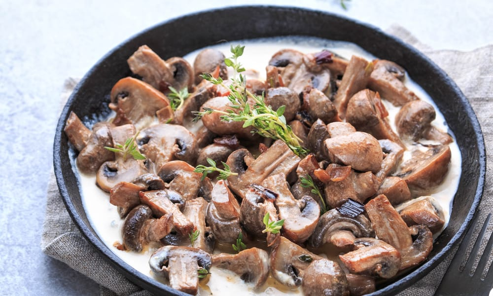 The Risk of Consuming Expired Mushrooms