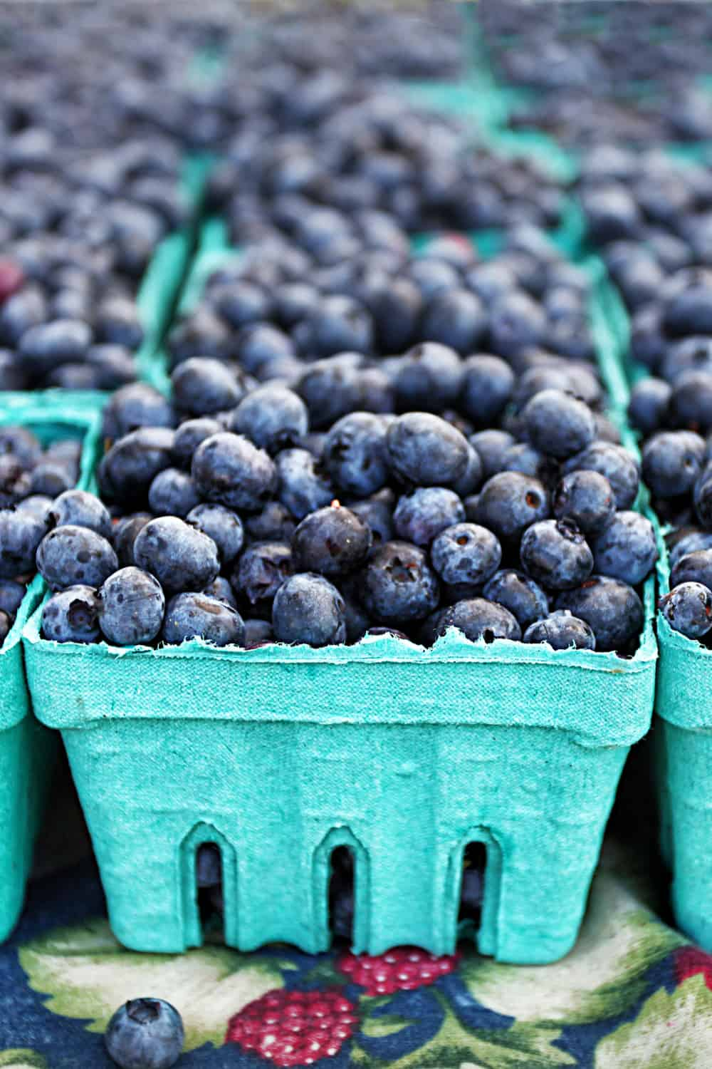 7 Tips to Tell if Blueberries Has Gone Bad