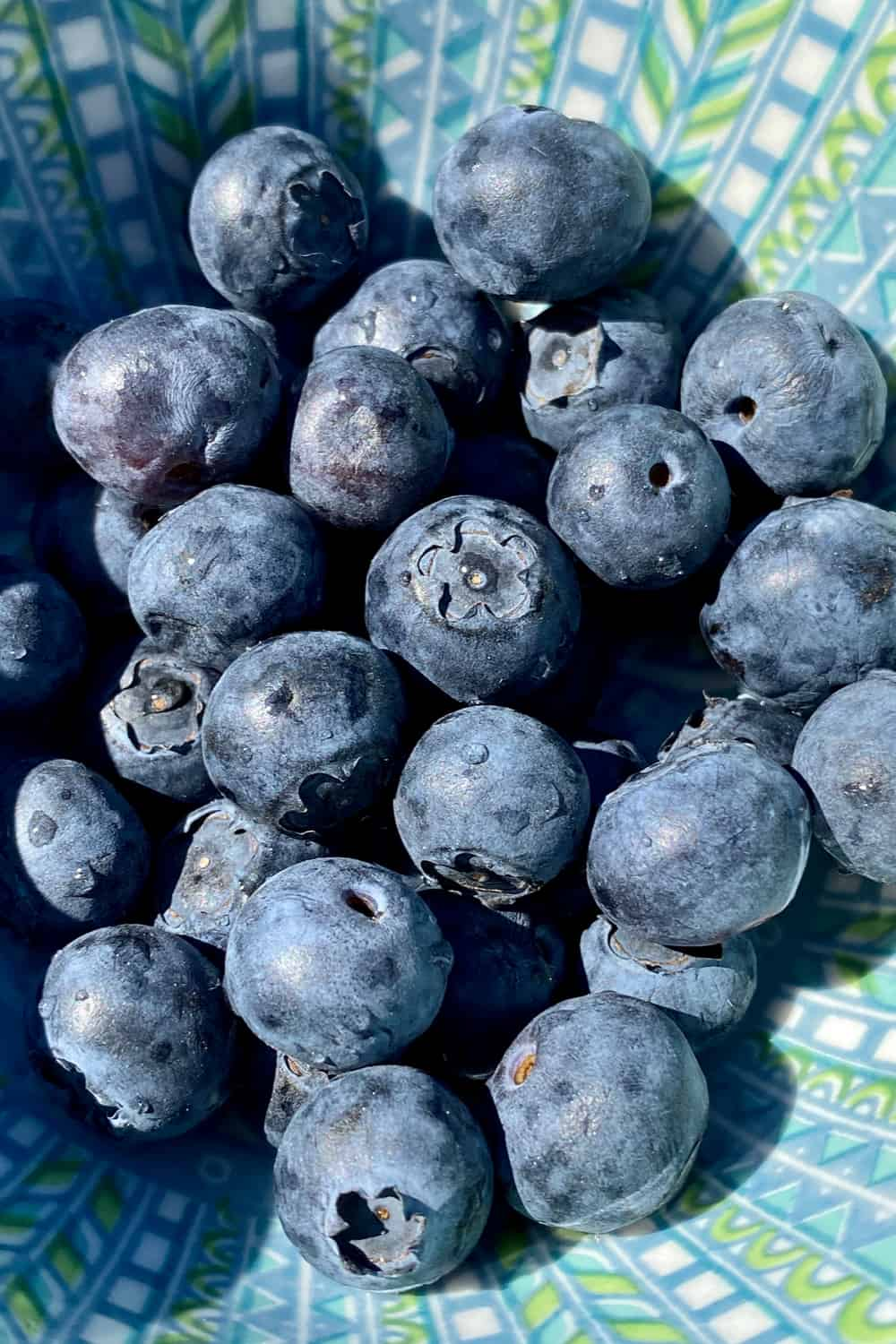 Do Blueberries Go Bad How Long Does it Last