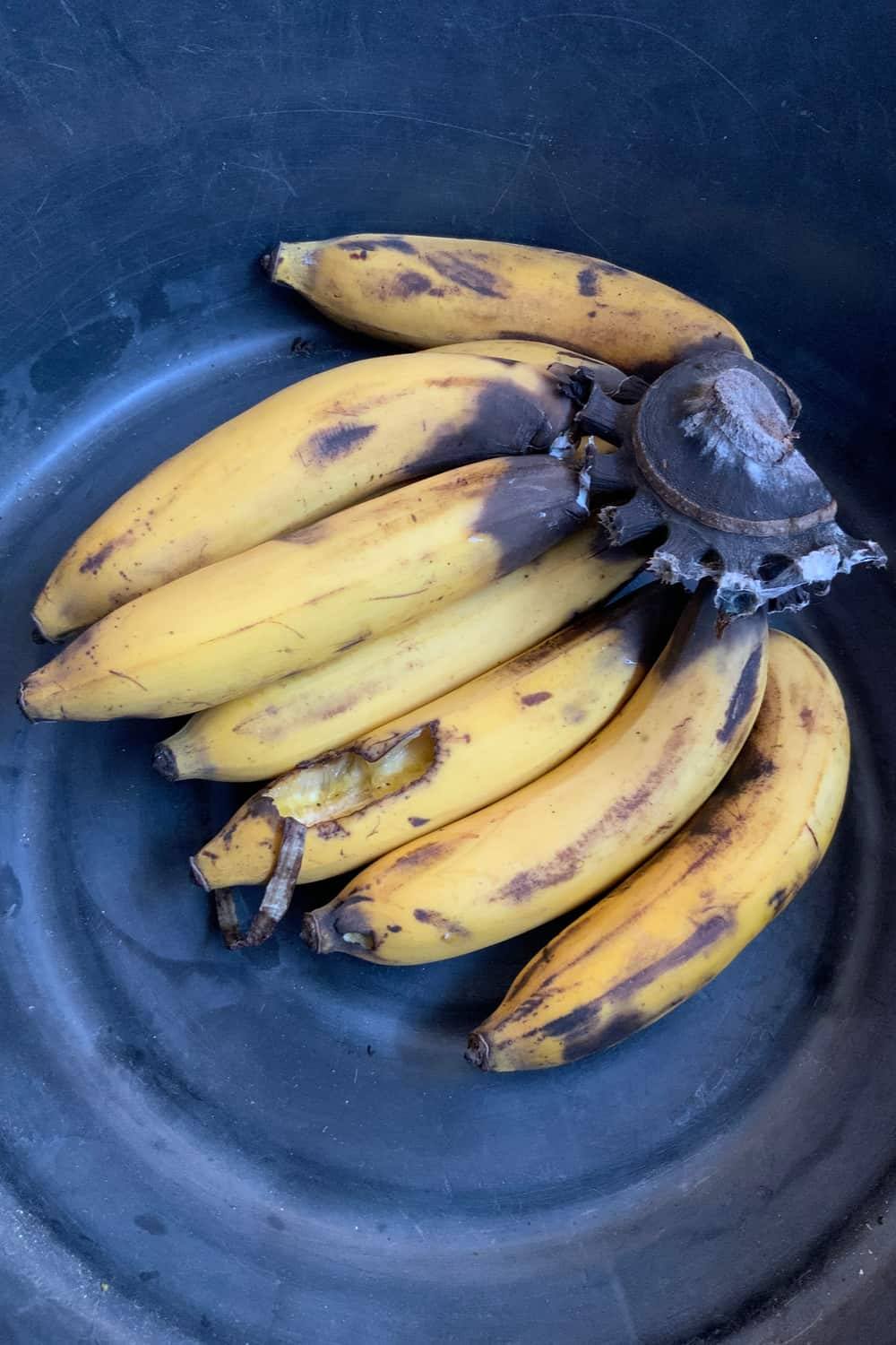 3 Tips to Tell If Banana Has Gone Bad