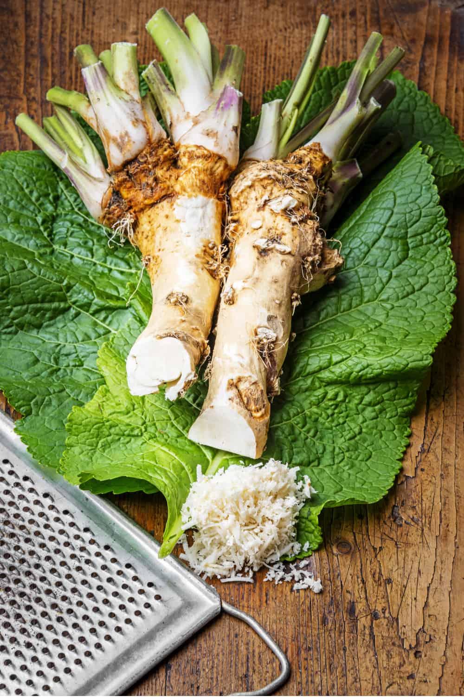 Does Horseradish Go Bad How Long Does It Last