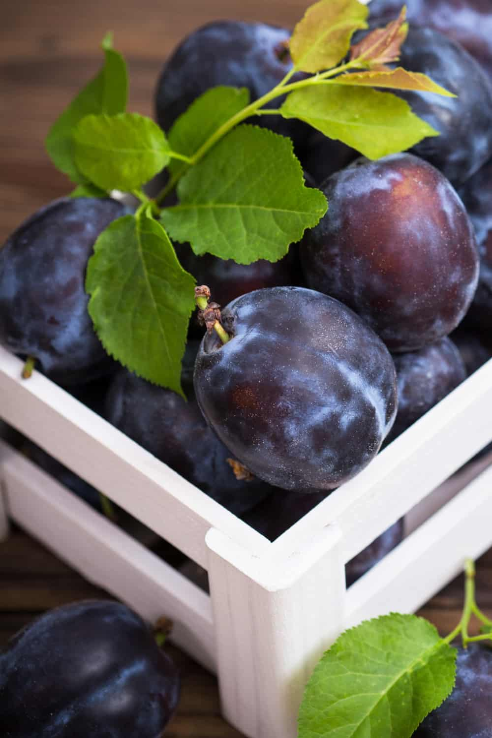 4 Tips to Tell if Plums Have Gone Bad