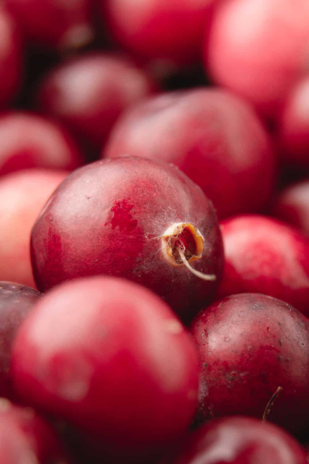 Tips to Tell if Cranberries Have Gone Bad