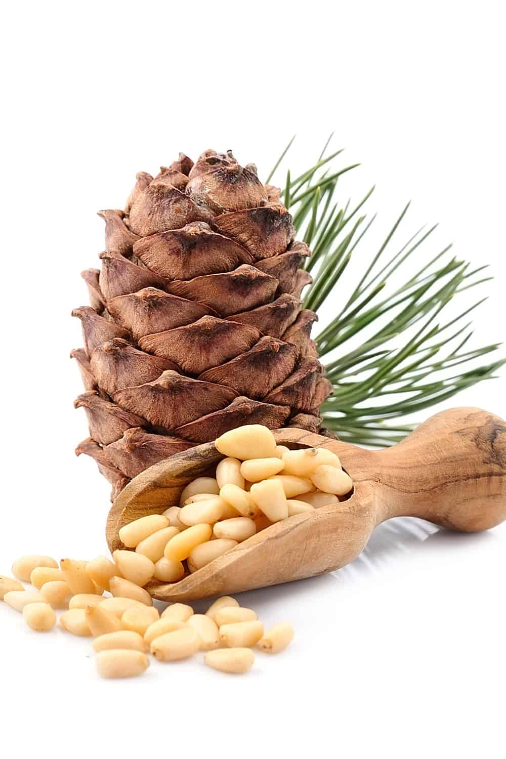 How Long Do Pine Nuts Last